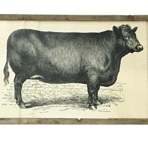 Vintage Cow Wooden Frame Wall Art